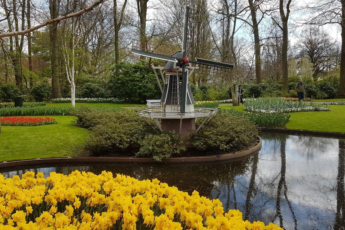 Haarlem en Arnhem 2 pareltjes voor een actieve gezinsvakantie e