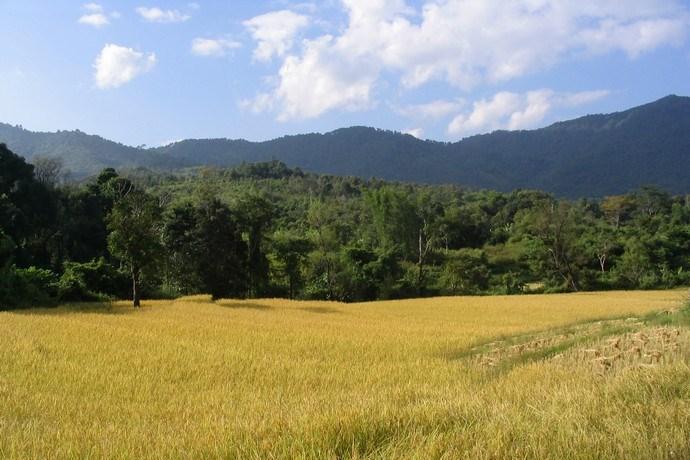Trektocht Chiang Mai Thailand 2